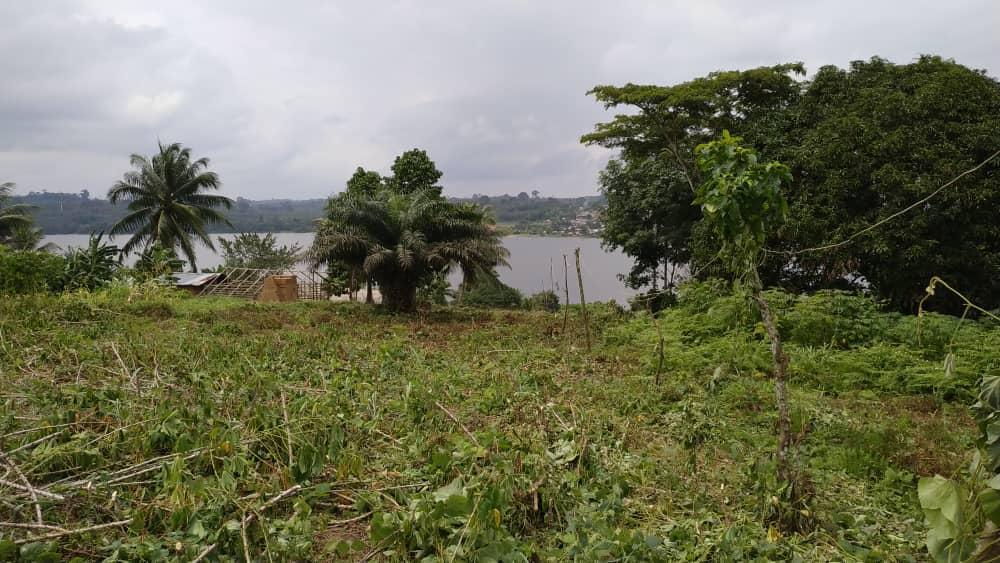 EPC en Afrique